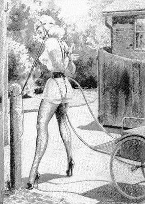 Ponygirl venter